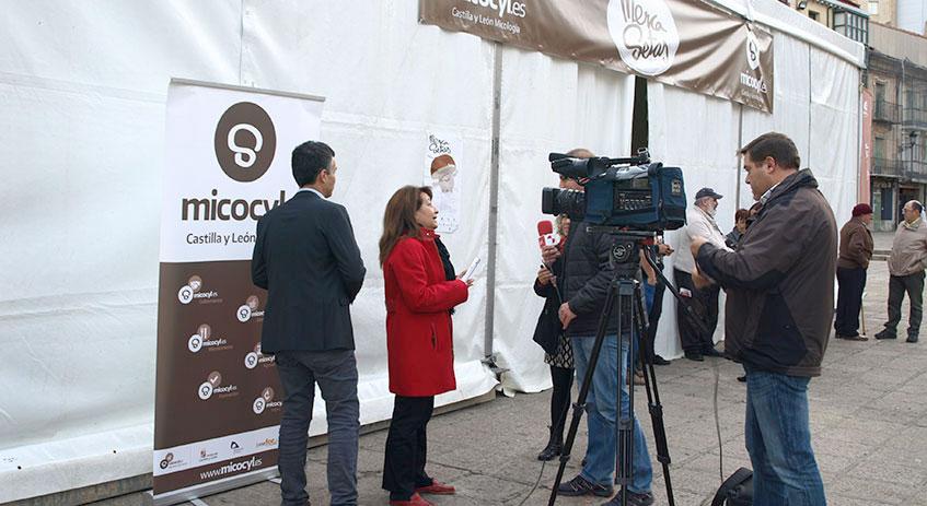 La concejala de Medio Ambiente del Ayuntamiento de Soria, Lourdes Andrés, atiende a los medios de comunicación