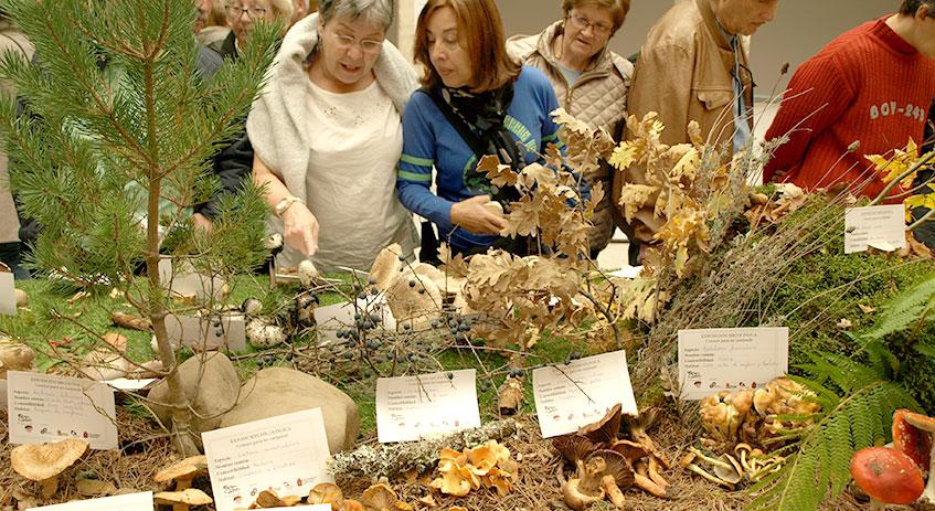 Los visitantes durante la exposición micológica
