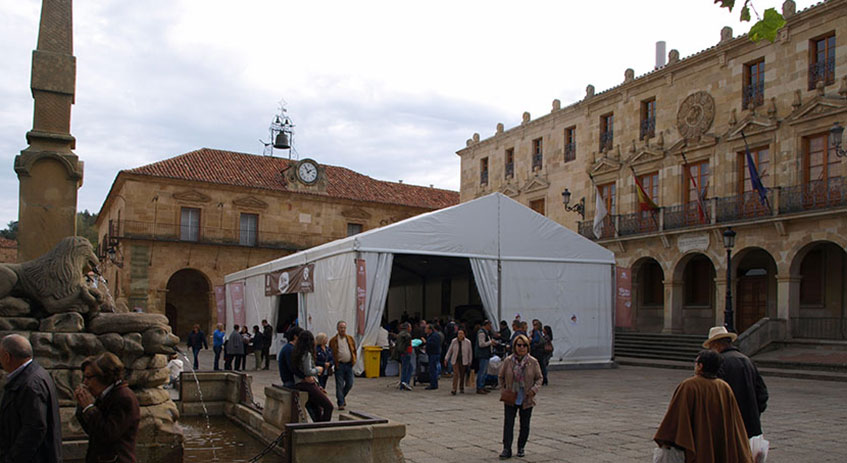 Vista lateral de la carpa Mercasetas montada en la Plaza Mayor de Soria